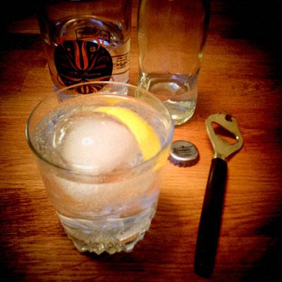 Review: Tevsjö Sea Buckthorn gin, Trader Magnus